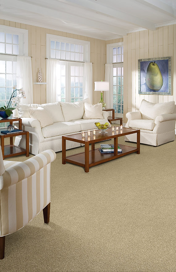 Carpet Idea Gallery Great Floors Begin With Great Ideas