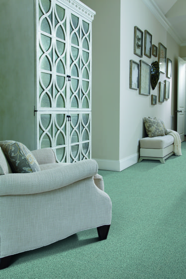 Having Fun carpet in Mint Julep from Shaw's HGTV collection at Great Floors Canada