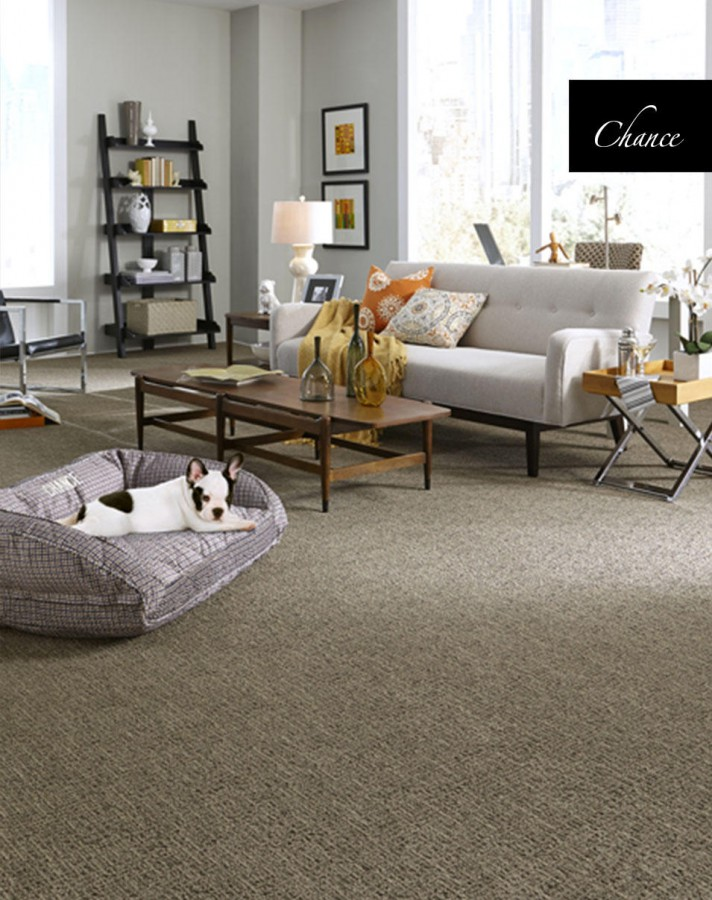 Chance by Tuftex | Great Floors Canada